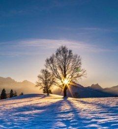 Wintertag © Füssen Tourismus und Marketing, Michael Helmer