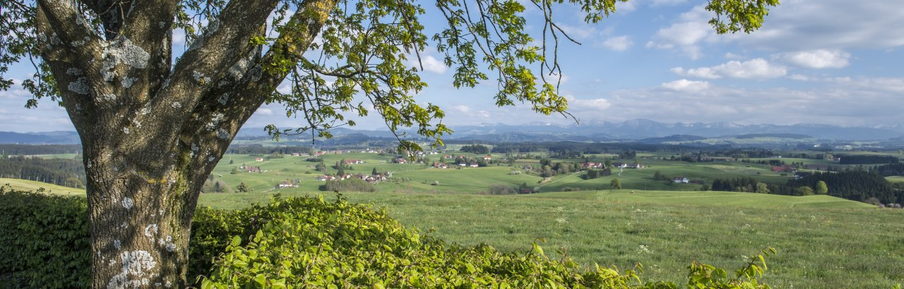 Panoramablick auf die Heimatstätte © Allgäu GmbH © Allgäu GmbH