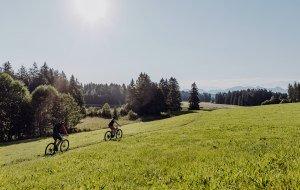 Naturbiken am Schwaltenweiher © Allgäu GmbH, Martin Erd