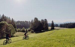 Schwaltenweiher Naturbiken Allgäu/Tirol © Allgäu GmbH, Martin Erd