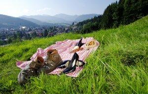 Picknick Oberstaufen © Oberstaufen Tourismus © Oberstaufen Tourismus