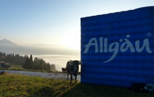 Marke Allgäu_Würfel © Allgä GmbH