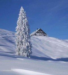 Alpe Mittelberg im Winter © Alpe Mittelberg