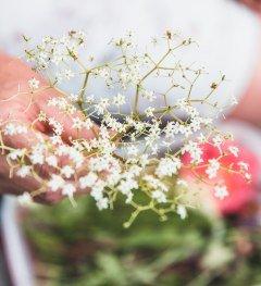 Kräuter und Blumen © Allgäu GmbH, Susanne Baade