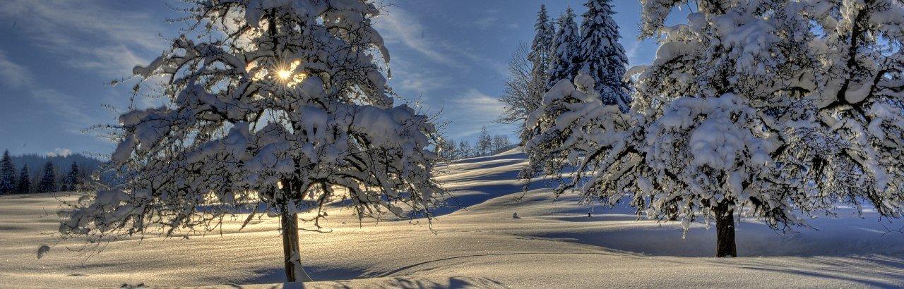 Panorama-Winterwanderweg © Andrea Presser